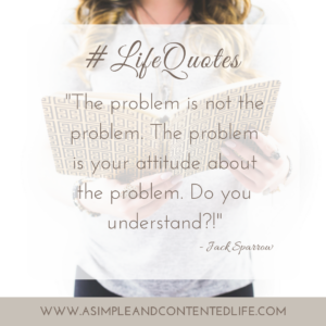 How quotes can help us achieve our goals, The problem is not the problem, the problem is your attitude about the problem, do you understand