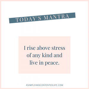 Positive Affirmation for Stress and Anxiety that reads: I rise above stress of any kind and live in peace.